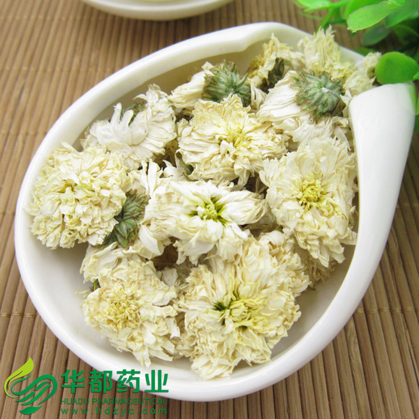 Chrysanthemum / 贡菊 / Gong Ju