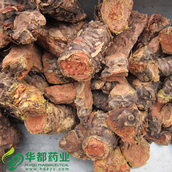Root of Kirilow Rhodiola / 红景天 / Hong Jing Tian