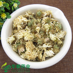 Chrysanthemum / 菊花 / Ju Hua