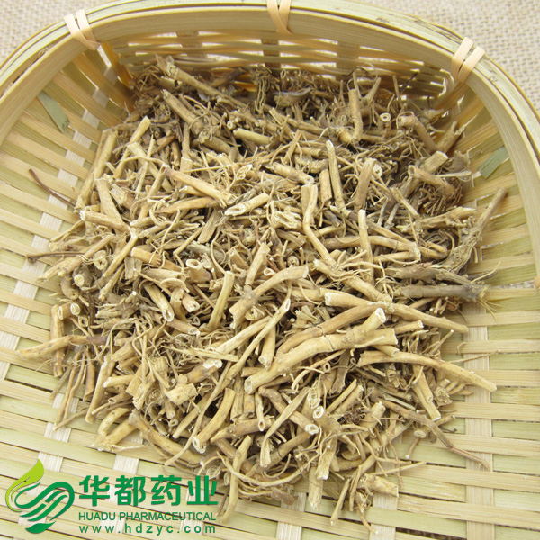 Rhizoma Cynanchi Stauntonii / 白前 / Bai Qian